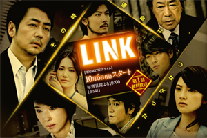 LINK-300