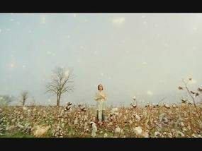 MikaNakashima-CRYNOMORE-3p