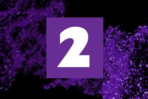 TV2-NZ-300