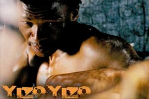 YizoYizo-300