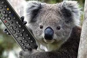 La télévision australienne pour les nuls