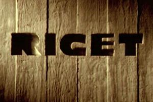 Riget-300