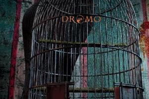 Dromo-300
