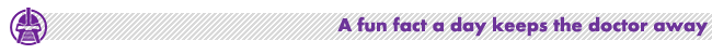 FunFact-Frak-650