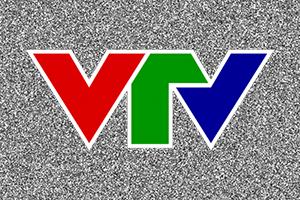 VTV-300