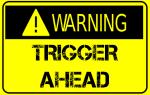 TriggerWarning-300