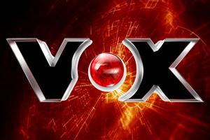VOX-DE-300