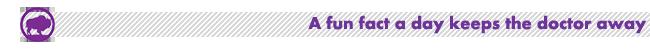 FunFact-Buffalo-650