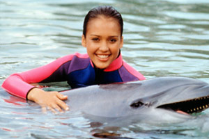 Flipper-1995-300