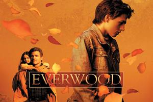 Everwood-300