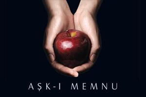AskiMemnu-2008-300